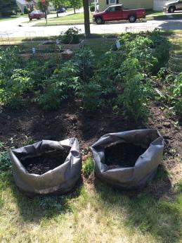 garden 7-4.potato bags